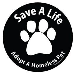 Save A Life Adopt a Homeless Pet Magnet Dog Gift