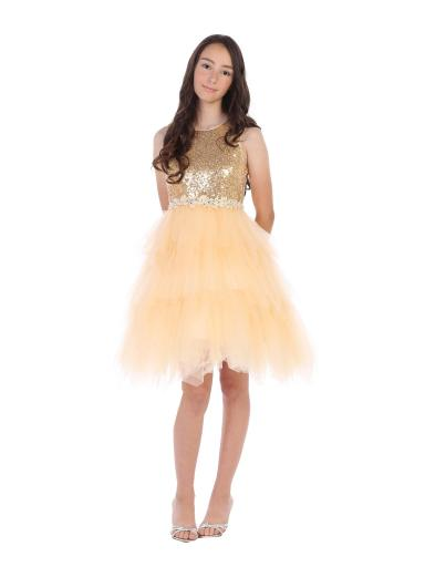 Angels Garment Girls Champagne Tulle Sequin Criss-Cross Party Dress 6-16