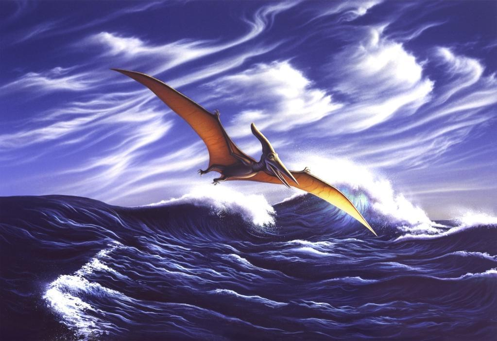 A Pteranodon soars just above the waves Poster Print