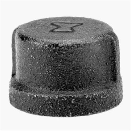 Anvil International 8700132106 .25 in. Steel Pipe Fitting Pipe Cap, Black