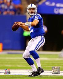 Andrew Luck 2015 Action Photo Print PFSAASH19301