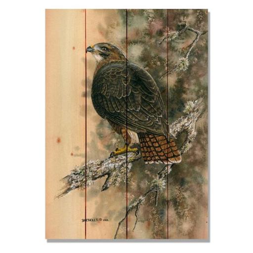 Day Dream DBRTH1420 14 x 20 in. Bartholets Red Tailed Hawk Wall Art