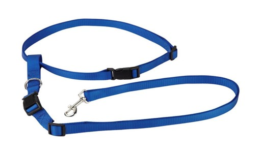 Deluxe Dog Kennel Hands Free Running Dog Leash
