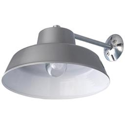 Canarm BL14CWS All Weather 1-Bulb Ceiling or Wall Mount All Weather Light with Clear Glass Globe, Grey