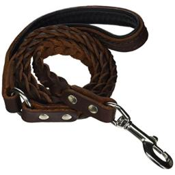 Dean and Tyler Comfort Braid Leather Leash, Brown 4-Feet by 3/4-Inch Width With Black Padding And Stainless Steel Hardware.