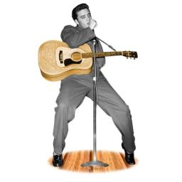 Advanced Graphics Lifesize Wall Decor Cardboard Standup Poster Elvis Presley
