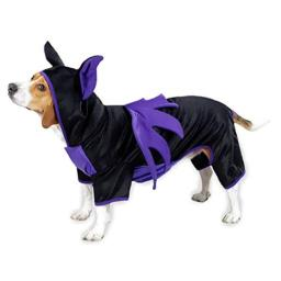 Casual Canine Polyester Bat Dog Costume, X-Small, 8-Inch