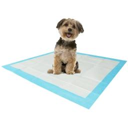 "Stella Puppy Training Pads & Floor Protectors, 22"" x 23"" White/Blue - 100 Pack"