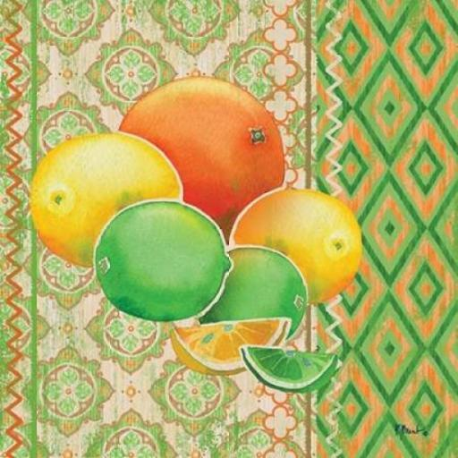Fruit Ikat IV Poster Print by Paul Brent CHCBNTWJ9BMZ1TAE