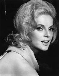 How To Murder Your Wife Virna Lisi 1965 Photo Print EVCMBDHOTOEC108H