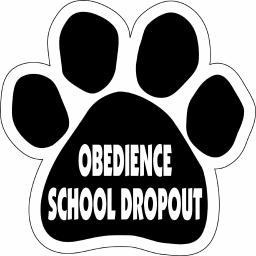 "Obedience School Dropout Paw Magnet Dog Cat 5.5"" x 5.5"" Shaped Puppy Kitten"