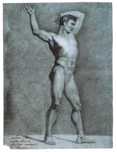 Study For A Male Nude Poster Print 784200