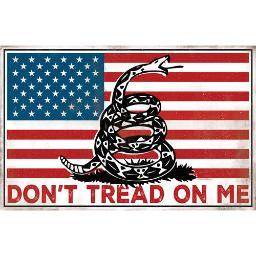 OPEN ROAD BRANDS 90158631 OPEN ROAD BRANDS DIE CUT TIN SIGN DON'T TREAD ON ME (FLAG)