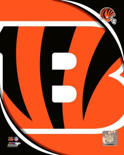 2018 Cincinnati Bengals Logo Photo Print