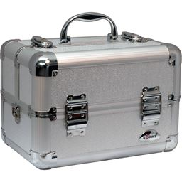 San Barnaba Train Makeup Case w/ Accordion Trays by Sunrise - Silver Circle