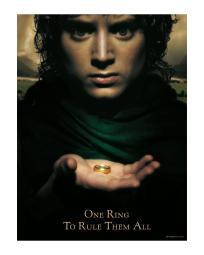 Lord of the Rings Fellowship of the Rings Poster 24x36 Hobbit Frodo Baggins One