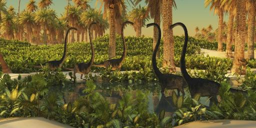 A herd of Omeisaurus dinosaurs use a small Jurassic pond for drinking and bathing Poster Print