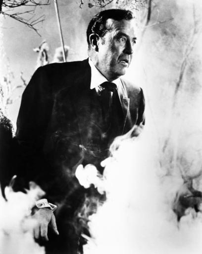 The Premature Burial Ray Milland 1962 Photo Print DKMVGDQYIABEMNX3