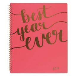 ATA Glance 102290527 8.5 x 11 in. Aspire Weekly & Monthly Planner, Coral