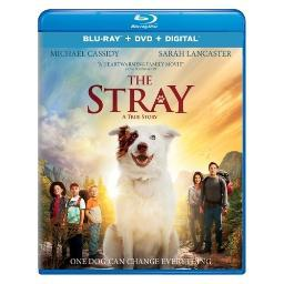 Stray (2017) (blu ray/dvd w/digital) (2discs) BR24194498