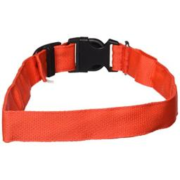 Petcessory PCL-001-RED-L LED Pet Collar, Large, Red