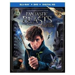 Fantastic beasts & where to find them (blu-ray) BR598606