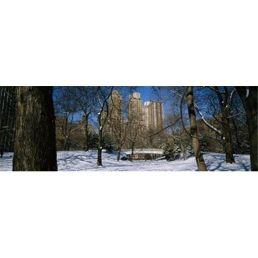Panoramic Images PPI120345L Bare trees with buildings in the background Central Park Manhattan New York City New York State USA Poster Print by P