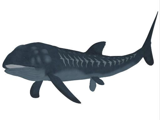 Leedsichthys was a carnivorous fish that inhabited Jurassic Seas that could grow to be 53 feet long Poster Print 774642