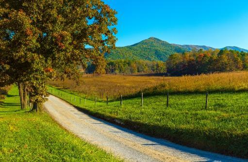 Dirt road passing through a field, Hyatt Lane, Cades Cove, Great Smoky Mountains National Park, Tennessee, USA Poster Print
