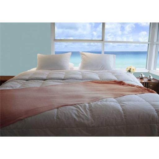 JS Comforts WGDXTK515 Premium Silver Antimicrobial White Goose Down Comforter - 800 Thread Count Egyptian Cotton - Extra Warm - King
