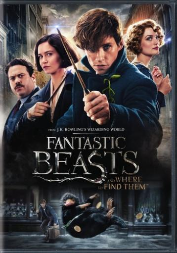 Fantastic beasts & where to find them (dvd/2 disc/special edition) ZJ8VWCFINDSV6ZSW