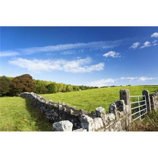 Posterazzi DPI12258600LARGE Rock Fence with Metal Gate & Grassy Hillside with Cattle Grazing Trees & Blue Sky & Clouds North of Kilrush Poster Print -