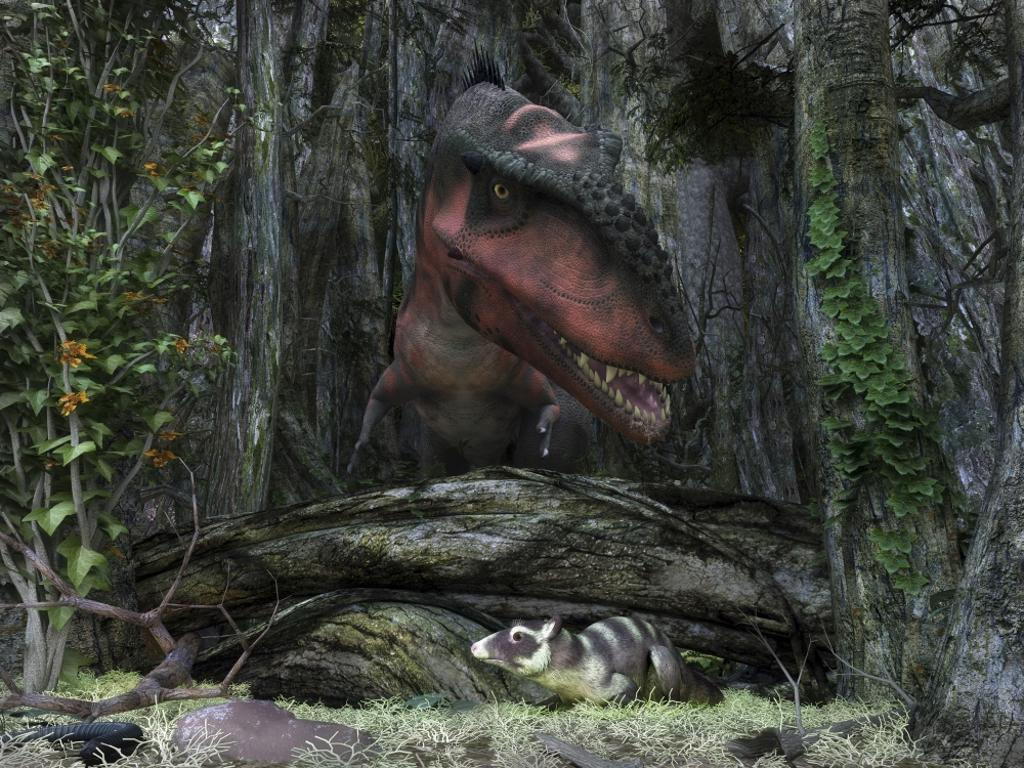 A rat-sized Purgatorius hides from a Bistahieversor dinosaur in a cretaceous forest Poster Print