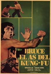 Bruce and Shao-Lin Kung Fu Movie Poster (11 x 17) MOV201966