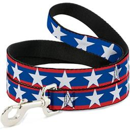 Buckle-Down Dog Leash Stars Stripes Red Blue White 4 Feet Long 0.5 Inch Wide