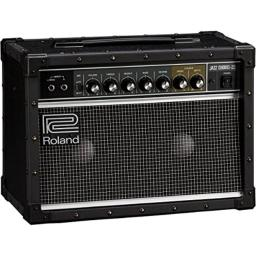 Roland JC-22 Jazz Chorus 40-Watt Guitar Amplifier