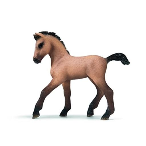 Schleich Andalusian Foal Figurine Features nine twisted trivia card games you can play alone or with your friends*Categories include: Food Frenzy, Video Games, Wild Things, and more.*Includes 68 trivia category cards, carrying case and rules of play booklet*4 answer cards and 2 category counter cards*This software works only with the FLY 1.0 Pentop Computer, and is not compatible with the FLY Fusion Pentop Computer