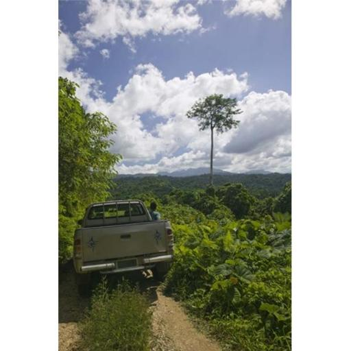 Panoramic Images PPI132711L Truck a dirt road Malao Big Bay Highway Espiritu Santo Vanuatu Poster Print by Panoramic Images - 12 x 36