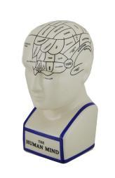 Off White Phrenology Head Porcelain Coin Bank