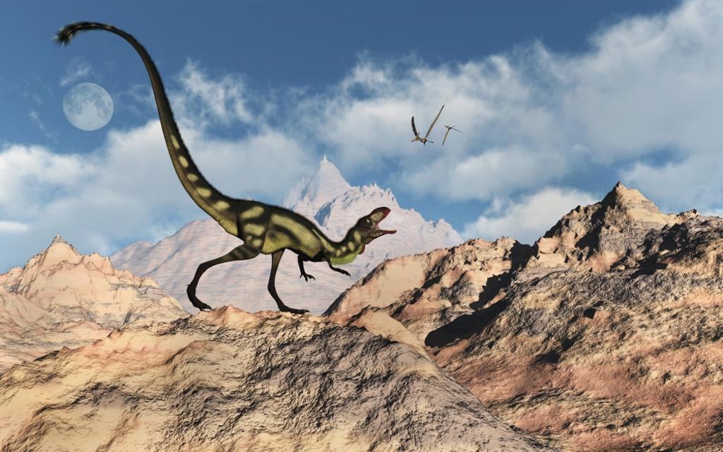A predatory tyrannosaurid Dilong dinosaur. Poster Print by Mark Stevenson/Stocktrek Images