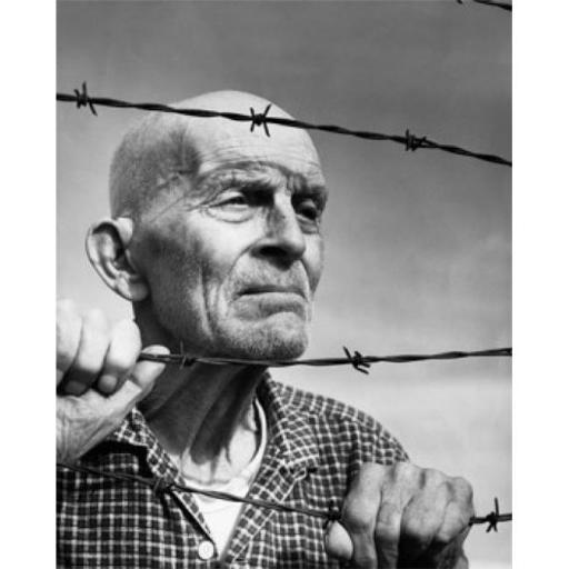 Posterazzi SAL2555310 Close-Up of a Senior Man Looking Through Barbed Wire Fence Poster Print - 18 x 24 in.