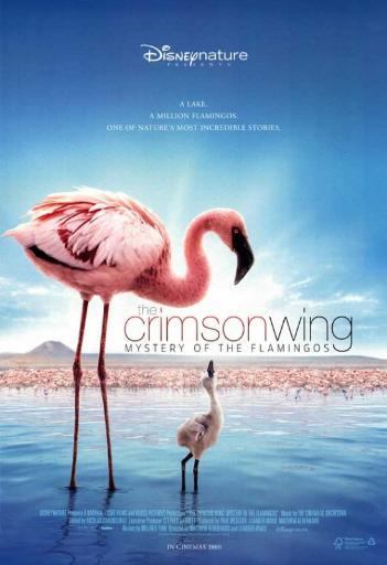 The Crimson Wing: Mystery of the Flamingos Movie Poster Print (27 x 40) 4RARVZXOR9YBAJGT