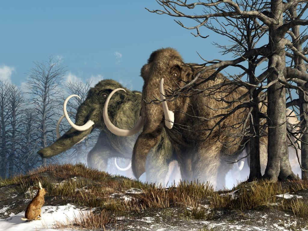 A rabbit witnesses a herd of mammoths in a snowy forest Poster Print