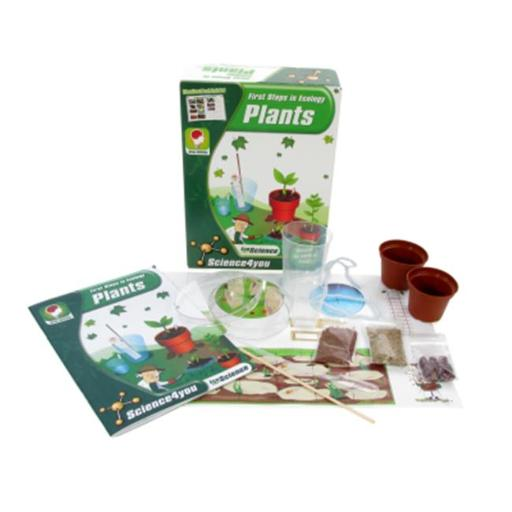 American Educational Products Sfy-91253 First Steps In Ecology, Plants, Science 4 You
