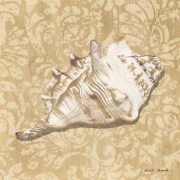 Shell Study III Poster Print by Nikita Coulombe PDXRB9940NCSMALL