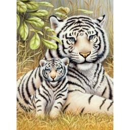 """Junior Small Paint By Number Kit 8.75""""X11.75"""" White Tiger Pair"""