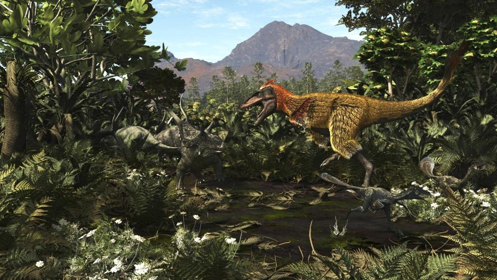 A protofeathered Lythronax comes upon a pair of Diabloceratops Poster Print