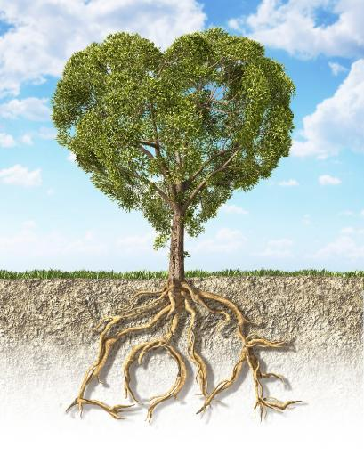 Cross section of soil showing a heart-shaped tree with its roots as text Love. Grass on the surface and fluffy clouds sky in the background Poster.
