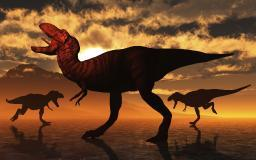 A pack of Tyrannosaurus rex dinosaurs hunting for food. Poster Print by Mark Stevenson/Stocktrek Images PSTMAS600159P