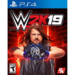 Playstation 4 WWE-2K19 Video Game Standard Edition
